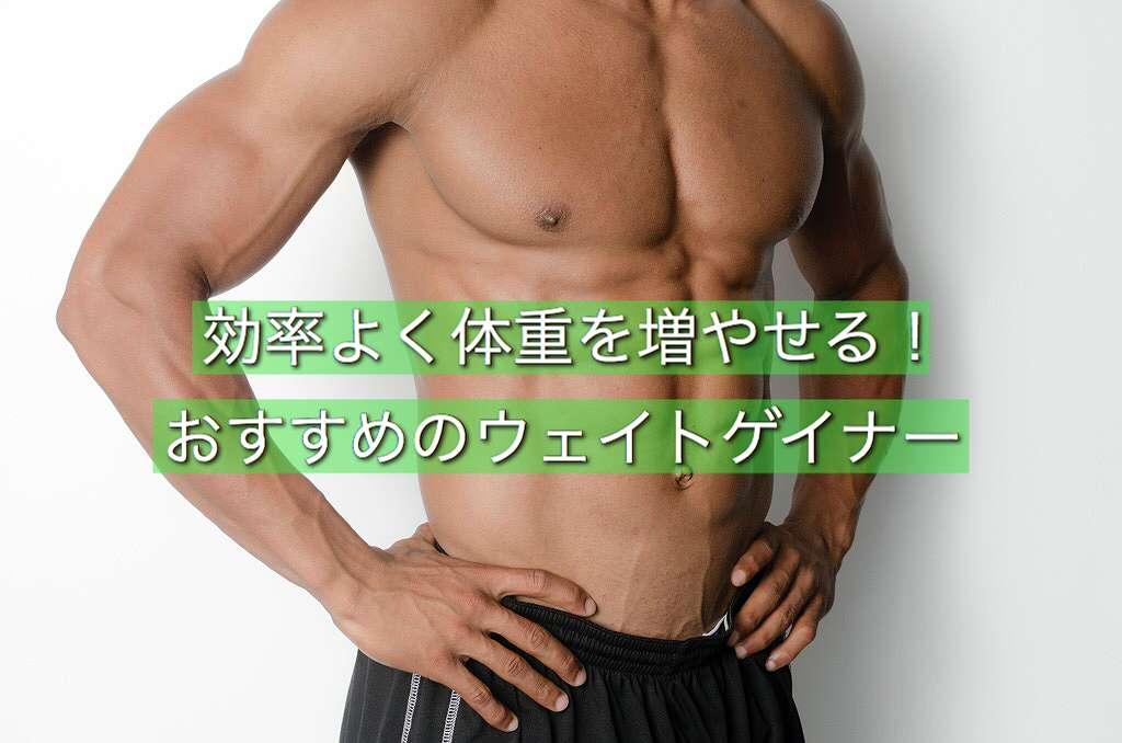 ガリ必見!体重の増量におすすめのウェイトゲイナーランキング